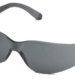 Pro-Vision Econo Wrap Eyewear